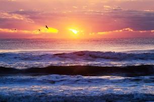 タイトルクリックで本文へ  2013.1.1 千葉県九十九里浜 あけましておめでとうございます。 本年もどうぞよろしくお願いいたします。